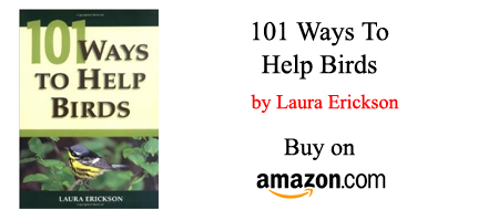ways-to-help-birds